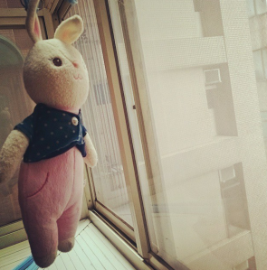 洗好澡的布娃娃兔子